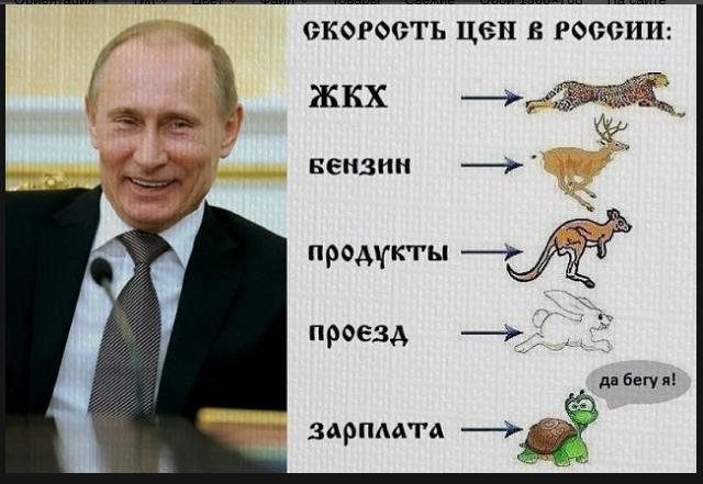 https://alexsf.ru/my_img/img/2016/11/26/b09ee.png